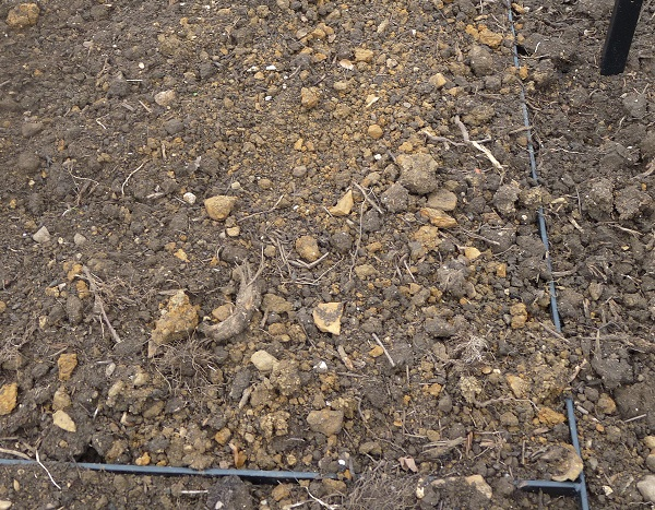 Bare soil will leach nutrients
